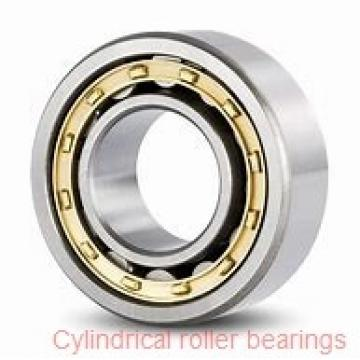 American Roller HCS 275 Cylindrical Roller Bearings