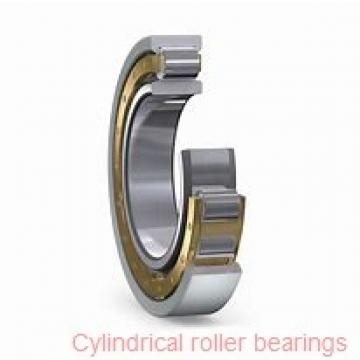 American Roller HCS 278 Cylindrical Roller Bearings