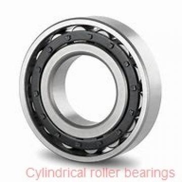 American Roller HCS 273 Cylindrical Roller Bearings