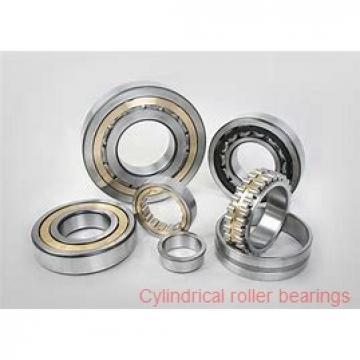 American Roller HCS 250 Cylindrical Roller Bearings
